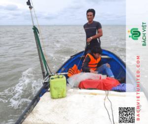 Khảo sát địa hình Khánh Hòa và khảo sát địa chất